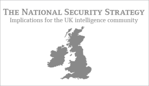 securitystrategybanner